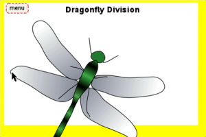 Dragonfly Division